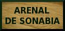 Arenal de Sonabia : access