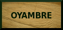 Beach of Oyambre: beach access