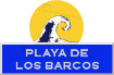 Icon  surf: Playa de los Barcos