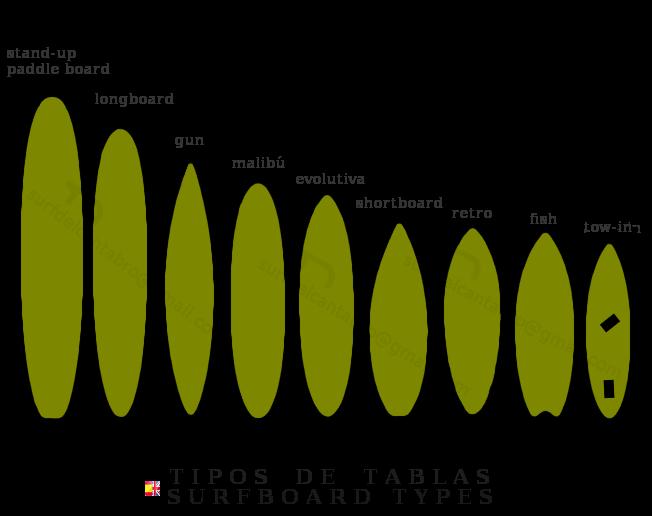 Tipos de Tablas Surf