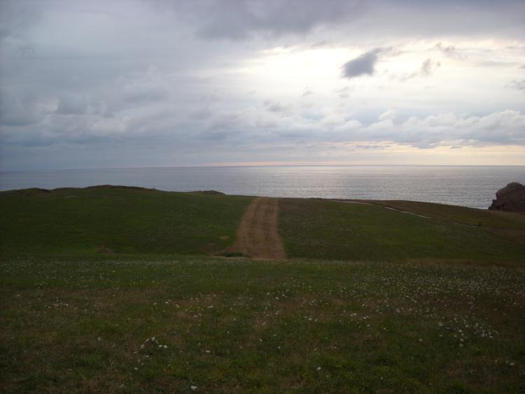 Camino hacia el Mar Cantábrico. Road towards the Cantabrian Sea