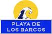 Icon  surf: Playa de los Barcos